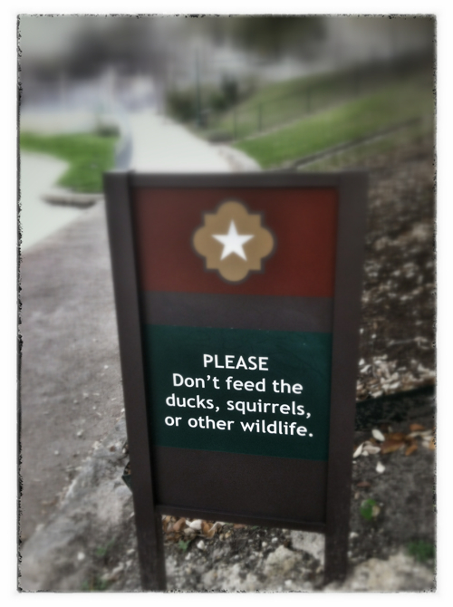 Please don't feed the wildlife