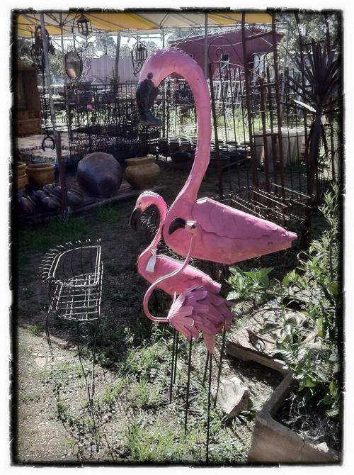 Pink Flamingo Metal