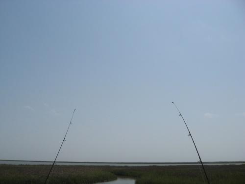 San Jose Island Fishing