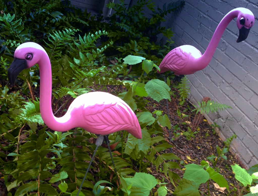Dallas Pink Flamingo