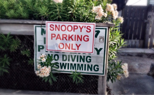 Snoopy's Parking Only
