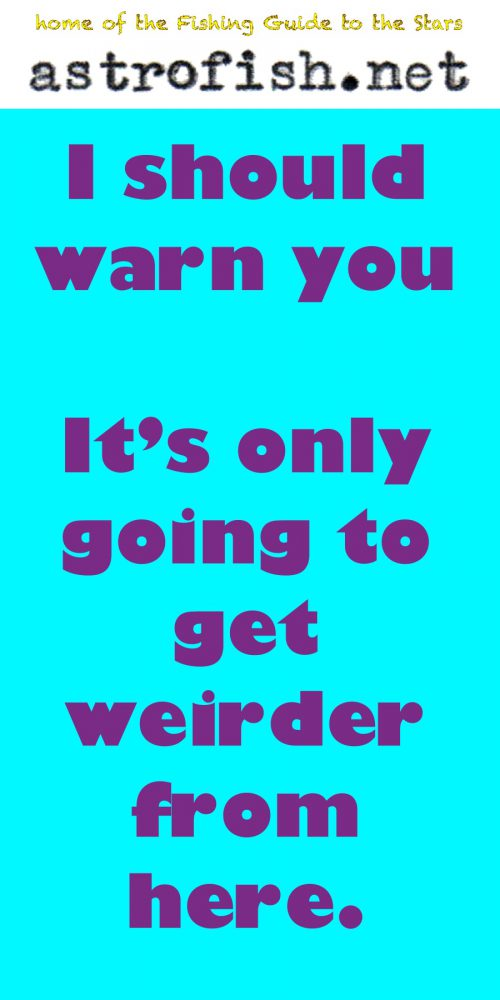 only gets weirder